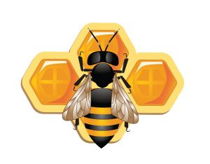vector-bee-honey-free-vector-graphics